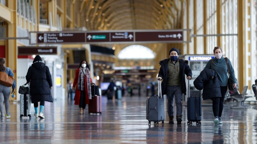 Airlines adding flights as interest in travel soars